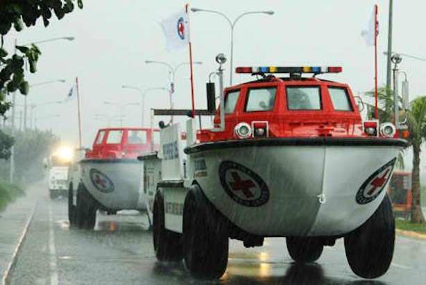 Philippine Red Cross Amphibians