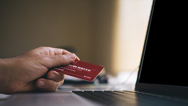 government-redeveloping-online-payment-system