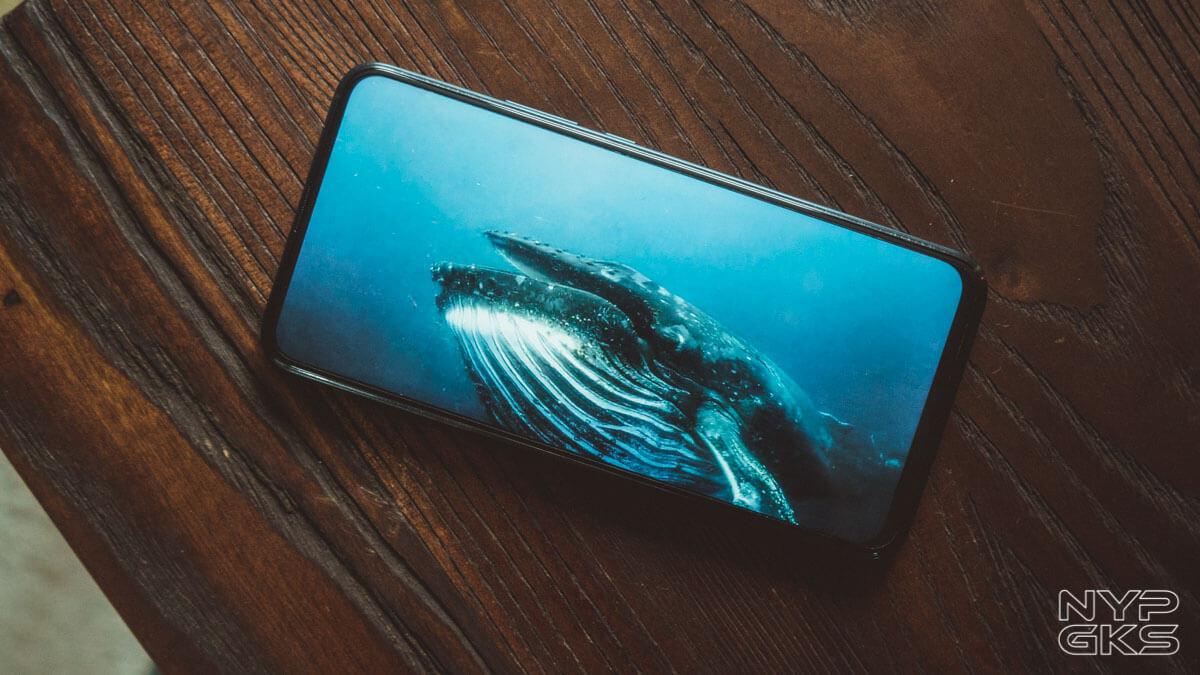 Huawei-Y9-Prime-2019-display