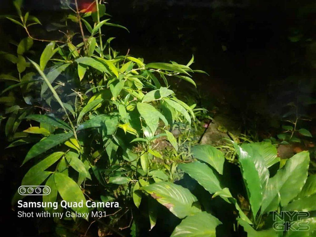 Samsung-Galaxy-M31-Camera-Samples-NoypiGeeks-5147