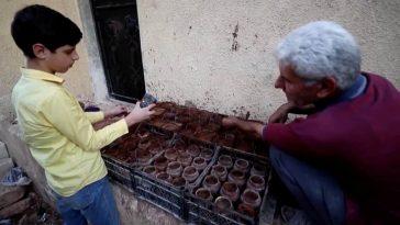 Syrian-soil-water-vinegar-electricity