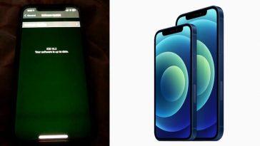 iphone-12-display-tinting-flickering-noypigeeks-5243