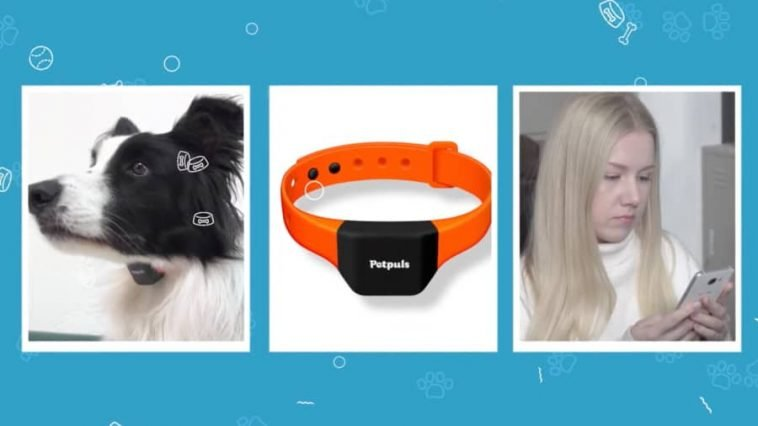 ai-smart-dog-collar-analyze-barks-pets-emotions-noypigeeks-5235
