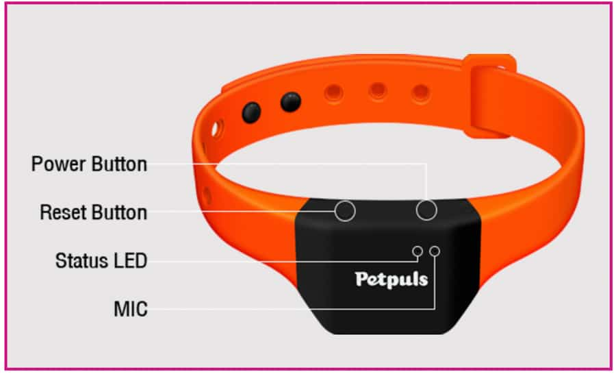 ai-smart-dog-collar-analyze-barks-pets-emotions-noypigeeks-5236
