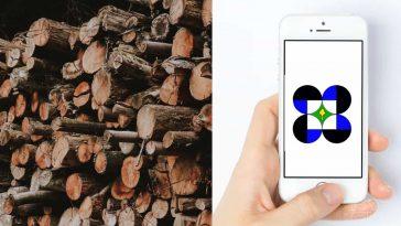 Mobile-app-illegal-logging-Philippines